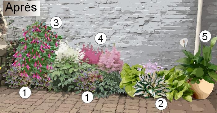 Créer un massif de fleurs à l\'ombre