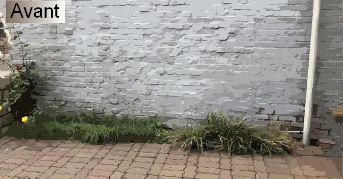 Rocaille Ombre créer un massif de fleurs à l'ombre