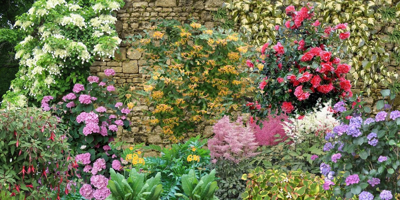 Comment fleurir un mur au nord - Que mettre dans un composteur de jardin ...