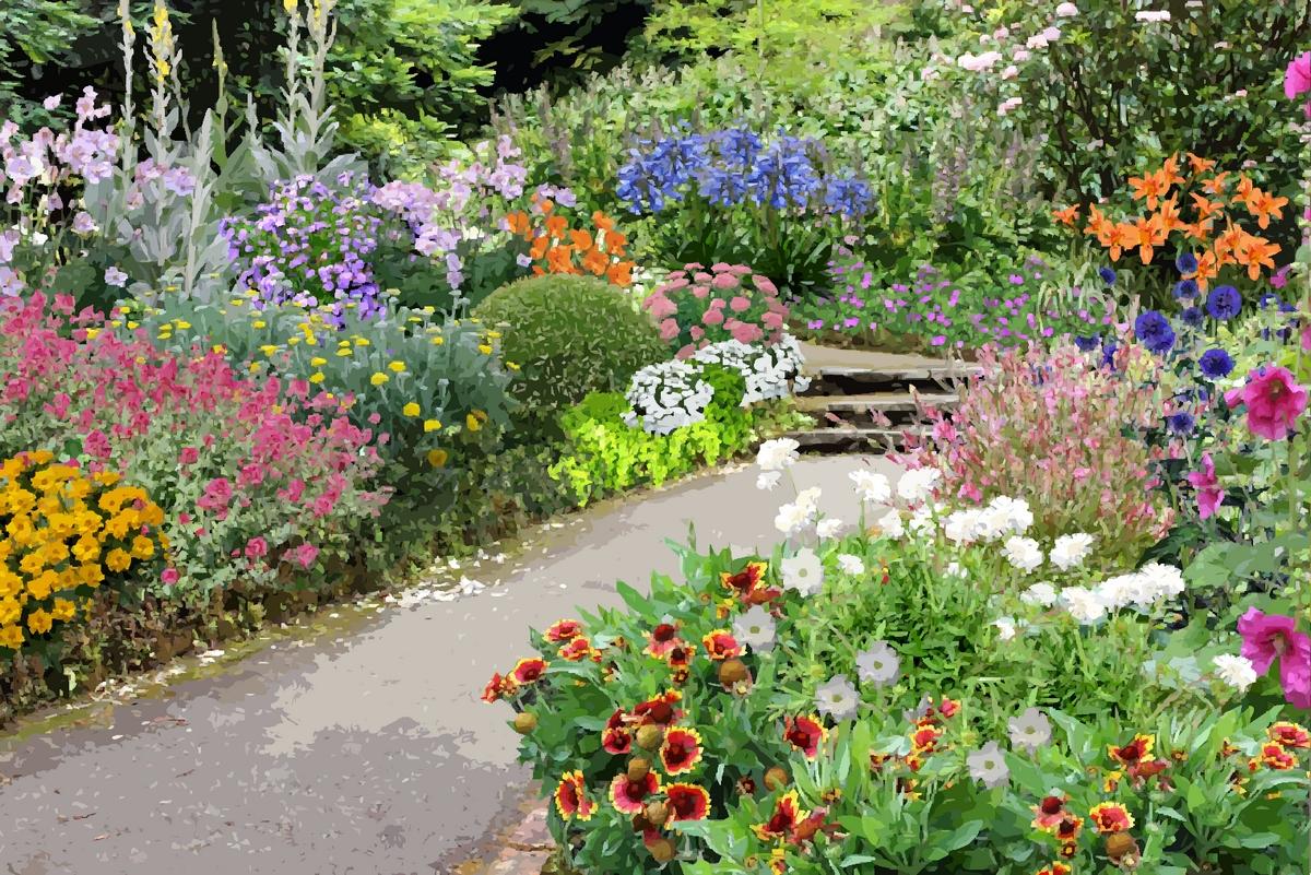 Arbuste Pour Terrain Calcaire créer un jardin en sol calcaire :