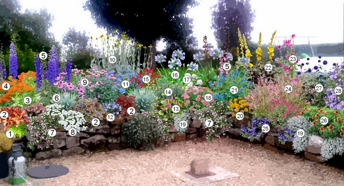 Categorie:Liste de plante - Wikipedia