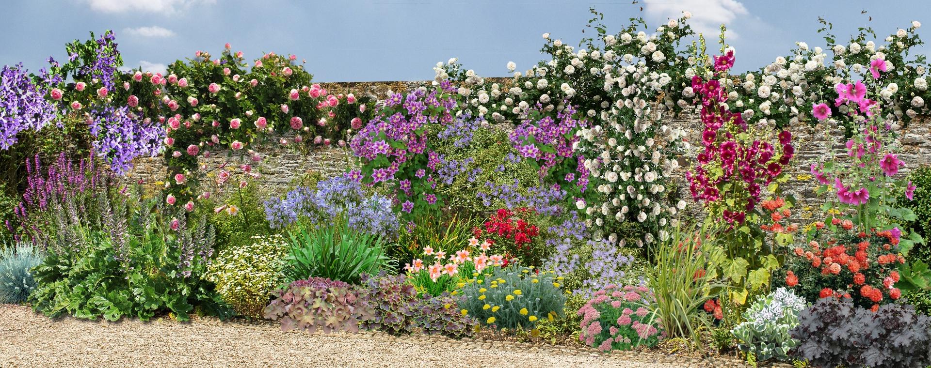 Plante Sur Les Murs comment fleurir un mur ensoleillé au sud dans le jardin :
