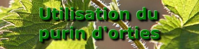 Utilisation du purin d 39 orties - Purin d ortie utilisation ...