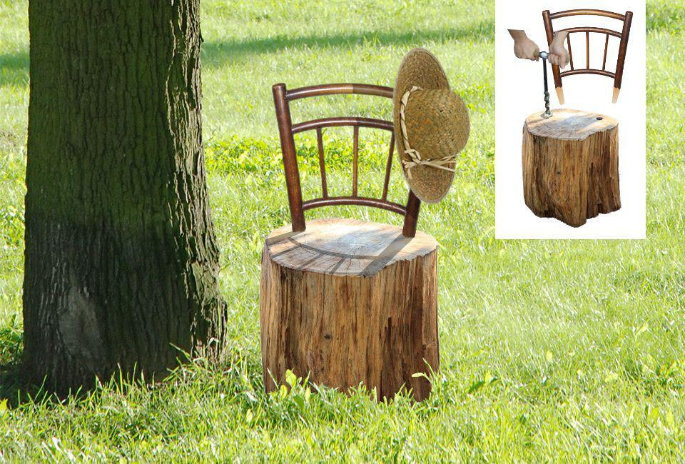 Cherche Bois De Bouleau Decoratif