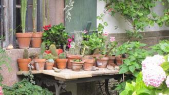 Decoration Escabeau Dans Jardin