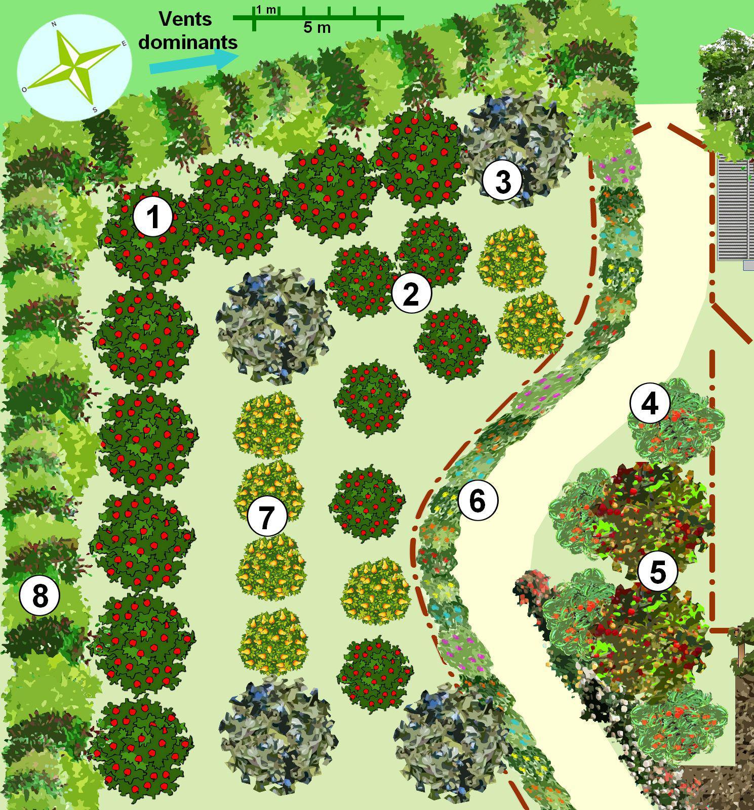 Créer un jardin en permaculture Plan