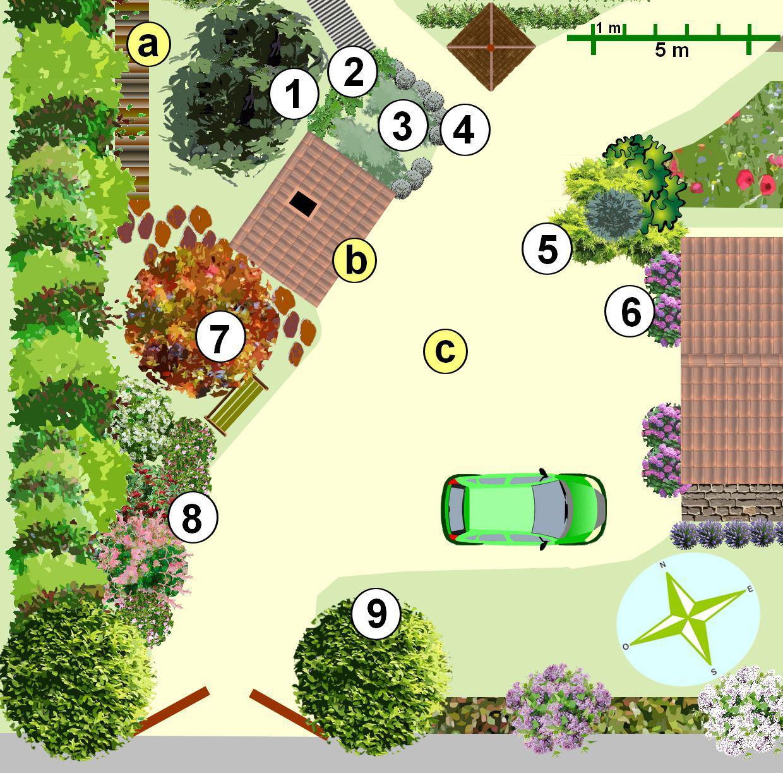 Rhubarbes 3 - Plantes médicinales 4 - Santolines 5 - Massif de ...