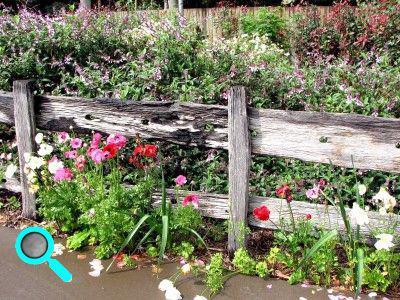 Cr er un jardin l 39 anglaise plan for Jardin de cottage anglais