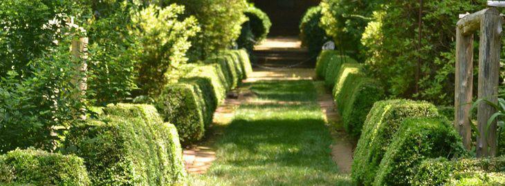 plan de jardin étroit: créer un jardin en longueur