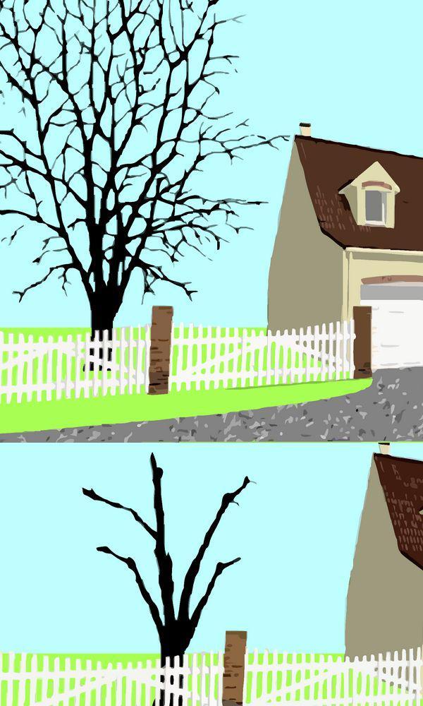 Quel arbre planter dans son jardin maison design mail for Quel arbre dans mon jardin
