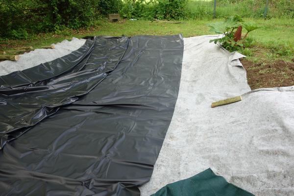 bassin de jardin avec bache