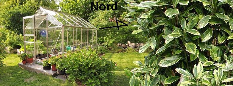 Installer une petite serre au jardin :