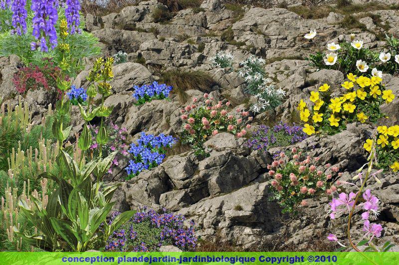 Cr er un jardin de montagne le jardin d altitude for Jardin 2 montagnes