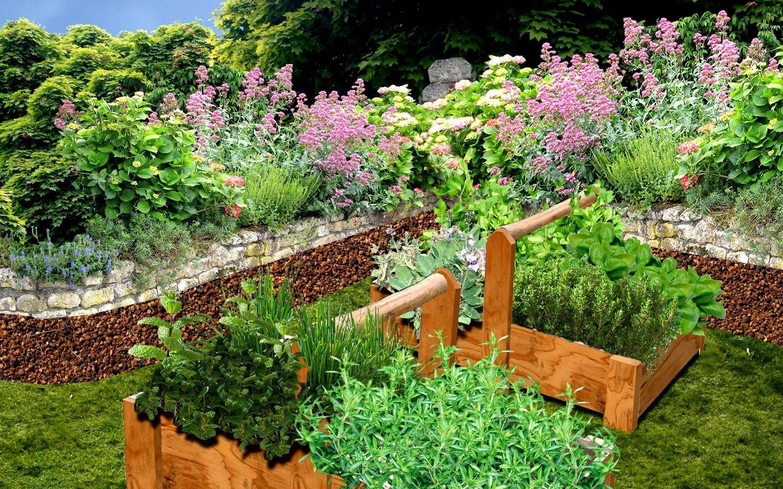 Creer Un Jardin D Aromatiques Plan Jardin D Aromatiques