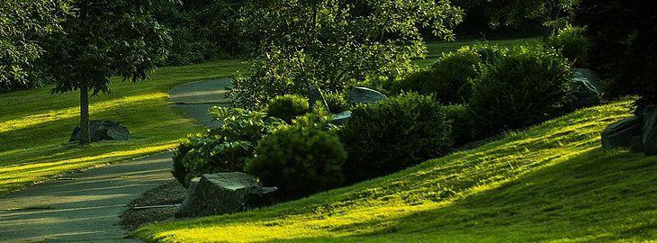 amenagement terrain en pente amnagement jardin en pente avec des gramines dornement et des. Black Bedroom Furniture Sets. Home Design Ideas