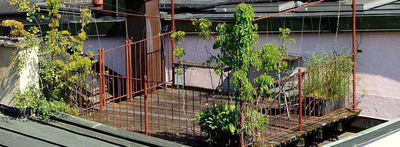 Cr er un jardin en terrasse sur les toits - Jardin sur terrasse toit dijon ...