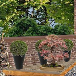 Amenager un jardin japonais jardin zen - Modele jardin zen ...