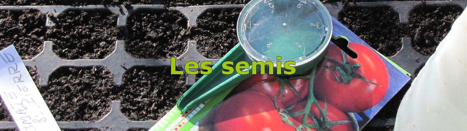 semis de tomate la maison en f vrier mars tout pour le r ussir. Black Bedroom Furniture Sets. Home Design Ideas