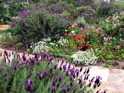 créer un jardin à l'anglaise: plan