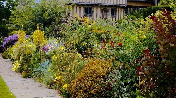 Mixed border plantation mixed borders entretien mixed border for Plantes arbustes vivaces