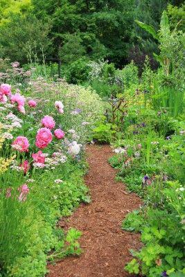 cr er un jardin l 39 anglaise plan