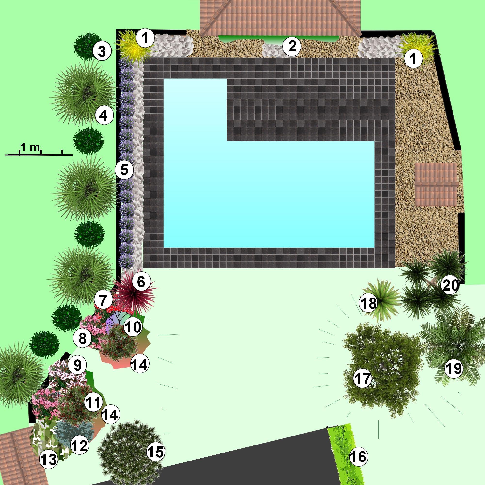 faire un jardin autour d'une piscine, planter les abords d'une