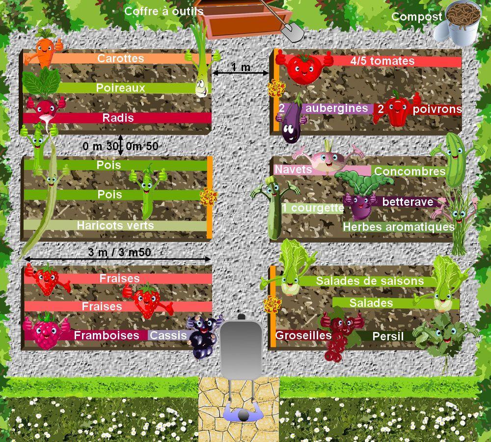 Faire un petit potager bio en ville - Plan petit jardin rectangulaire tourcoing ...