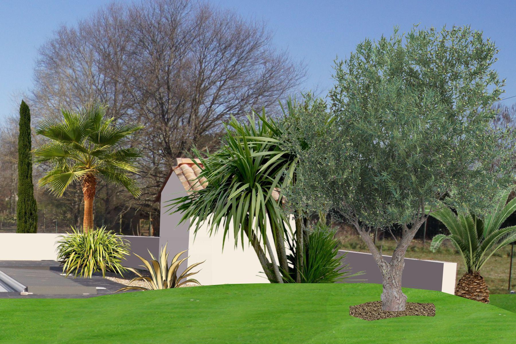 un air de mditerranen pour ce jardin autour dune piscine