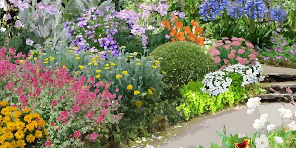créer une plate-bande de plantes vivaces