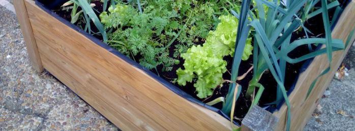 am nager son balcon un petit potager bio sur le balcon. Black Bedroom Furniture Sets. Home Design Ideas