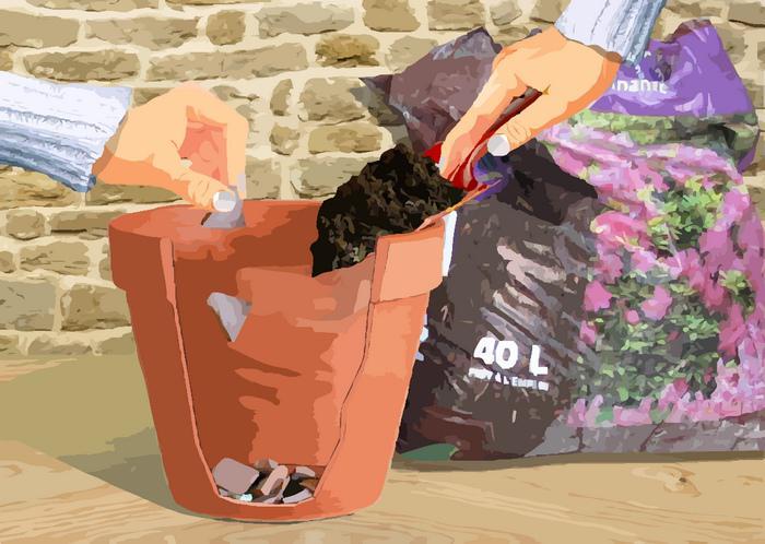 rhododendron en pot rempotage culture et entretien. Black Bedroom Furniture Sets. Home Design Ideas