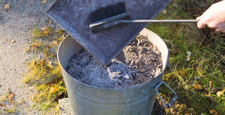 Utilisation de la cendre de bois au jardin biologique for Cendres dans le jardin
