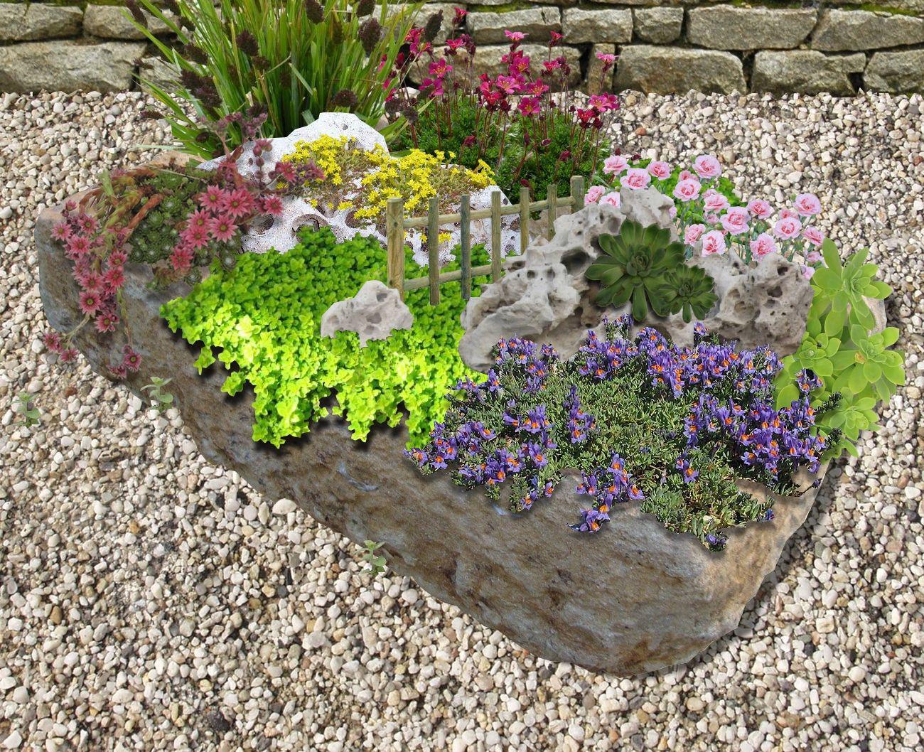 Petites Plantes Fleuries En Pot une rocaille en pot: un mini paysage pour votre balcon ou