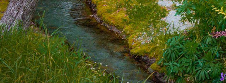 Amenager un petit cours d 39 eau cr er un ruisseau au jardin - Cascade artificielle exterieur ...