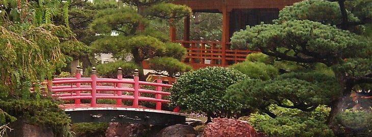 amenager un jardin japonais: jardin zen