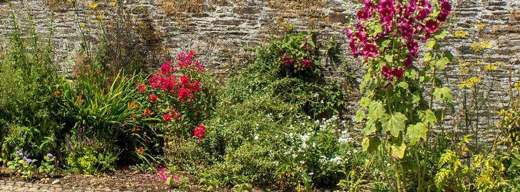 jardin romantique: créer un jardin romantique