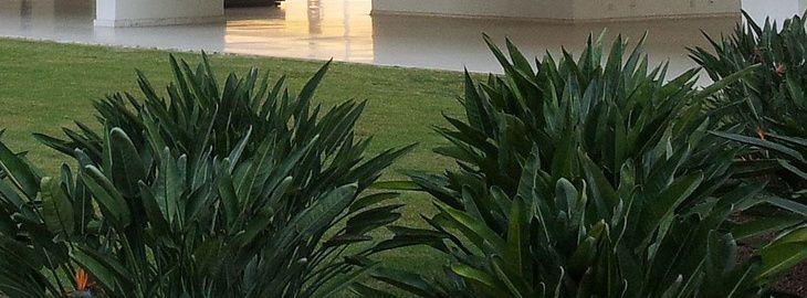 cr er un jardin moderne le paysage contemporain. Black Bedroom Furniture Sets. Home Design Ideas