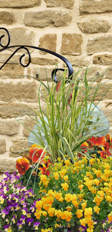 Suspensions et jardini res d 39 hiver fleuries for Jardiniere d hiver