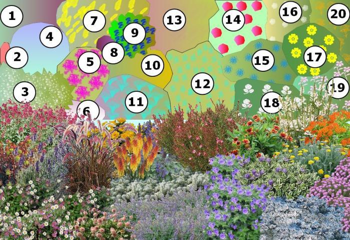parterre fleuri toute l ann e id e d 39 image de fleur. Black Bedroom Furniture Sets. Home Design Ideas
