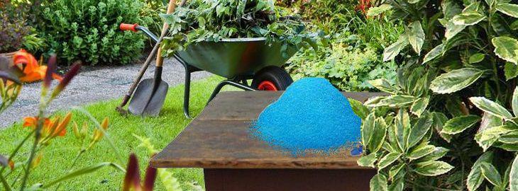la bouillie bordelaise au jardin biologique utilisation. Black Bedroom Furniture Sets. Home Design Ideas